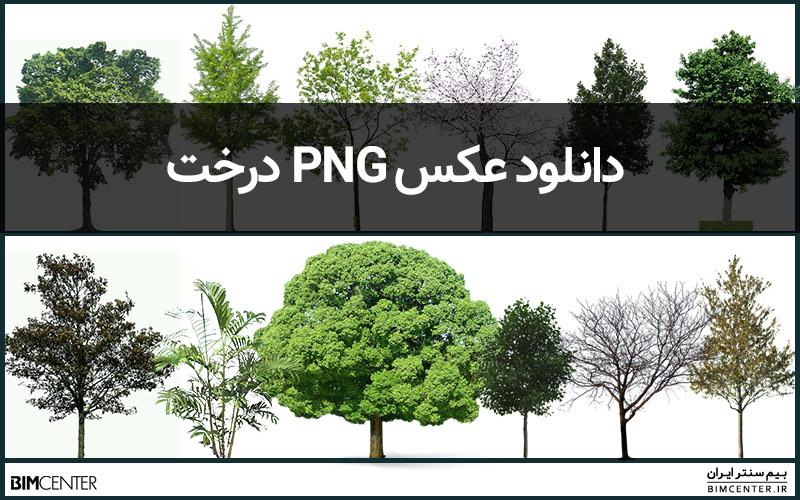 دانلود عکس درخت png